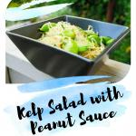 Kelp Salad with Peanut Sauce